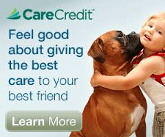 Care Credit Paymet System
